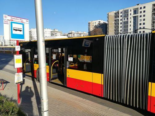 autobus 503